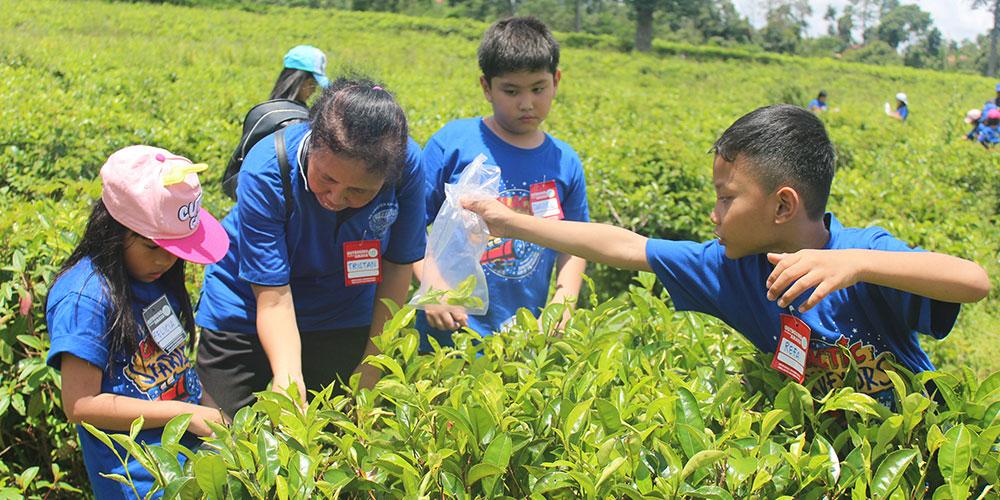 Siswa Kelas 2 SD Kalam Kudus Belajar tentang Lingkungan di Kemuning