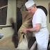 El pa durant la Guerra Civil Espanyola i la postguerra a través de la fotografia