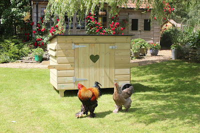 Handy 15 Hen House by Flyte so Fancy