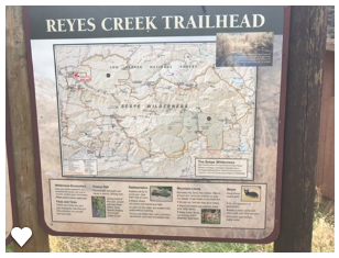 Lost In The Los Padres: Piedra Blanca Trail from Reyes Creek Campground