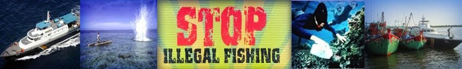 STOP ILLEGAL FISHING INDONESIA