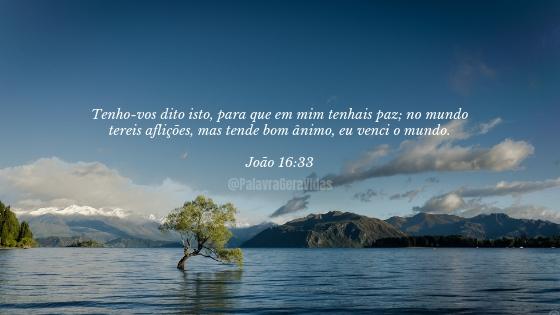 Top 10 Versículos Bíblicos - João 16.33