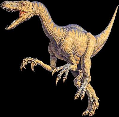 Dibujo del Velociraptor a color