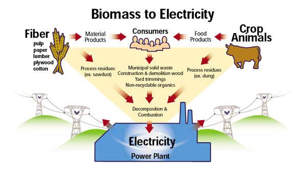 Listrik dari Energi Biomassa