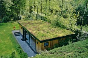 carlos sanz tejados vegetales. Black Bedroom Furniture Sets. Home Design Ideas