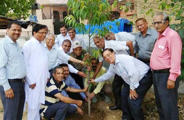 rwa-sector-29-faridabad-plantation-drive