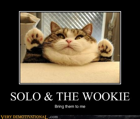 demotivational-posters-solo-the-wookie1.