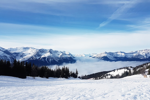 Scenic Snowshoe Tour Of Lake Louise At Lake Louise Ski Resort
