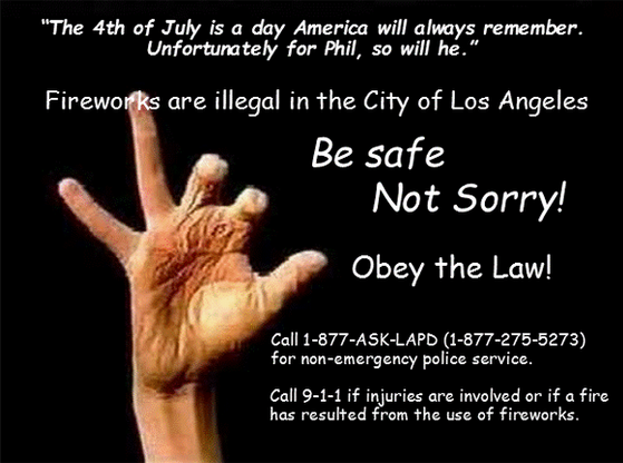 Print Celebrate Safely at a Public Fireworks Show in Los Angeles