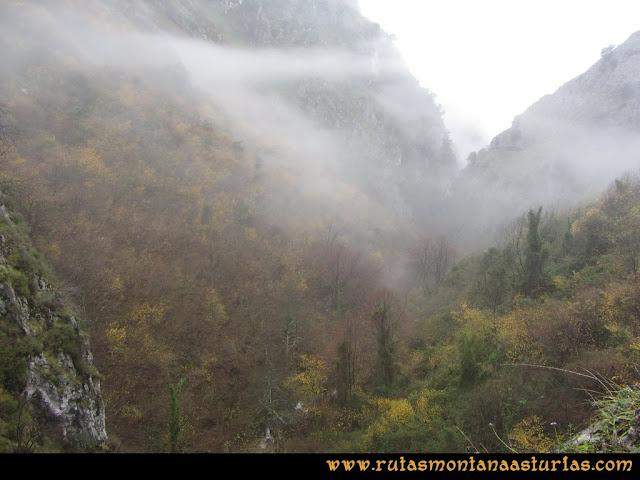 Ruta de las Xanas y Senda de Valdolayés: Bosque otoñal