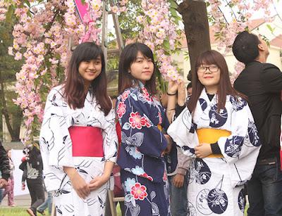 Đi du học Nhật Bản để có cơ hội ngắm hoa anh đào