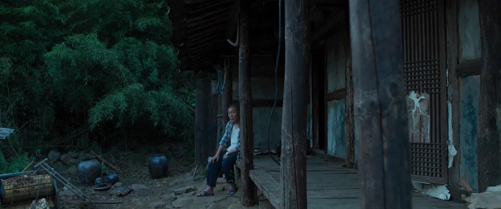 El Extraño (2016) HD 1080p Audio Latino captura 3