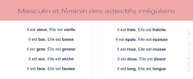 Masculin et féminin des adjectifs irréguliers, FLE, Le FLE en un 'clic'