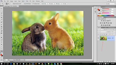 sử dụng layer panel trong photoshop
