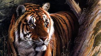 Tiger, Art, 4K, #4.563