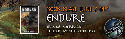 Excerpt and Giveaway – Endure (The Protector Series #4) by M.R. Merrick