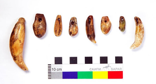 4,500 year old grave of Siberian noblewoman found