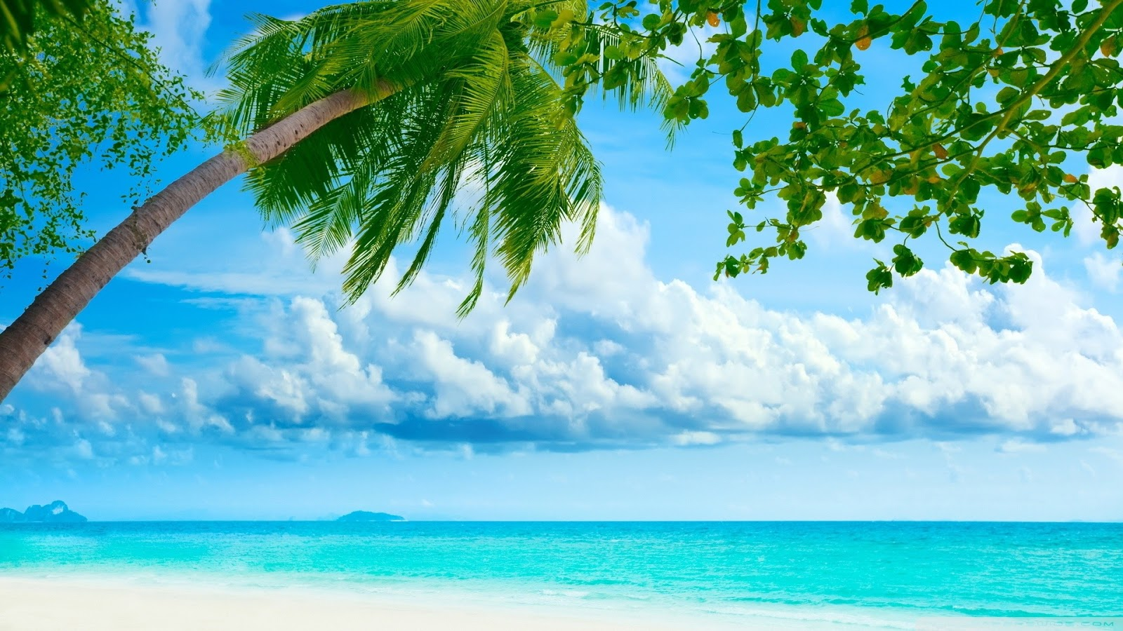 Tropical Island Beach Ambience Sound: Most Famous Places