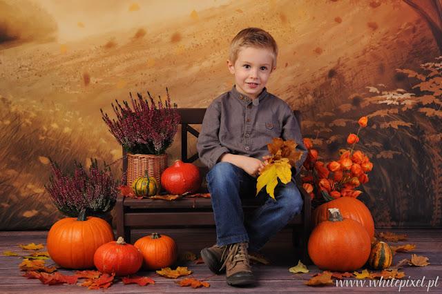 chłopiec na jesiennej sesji studyjnej z dyniami, ławeczką i wrzosami, liśćmi