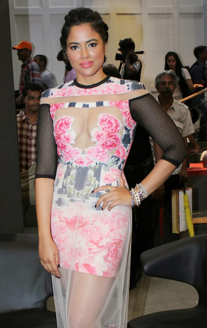 Sameera Reddy in pink hot gown