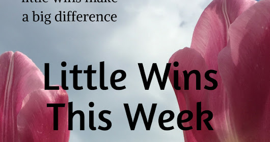 Little Wins This Week #14