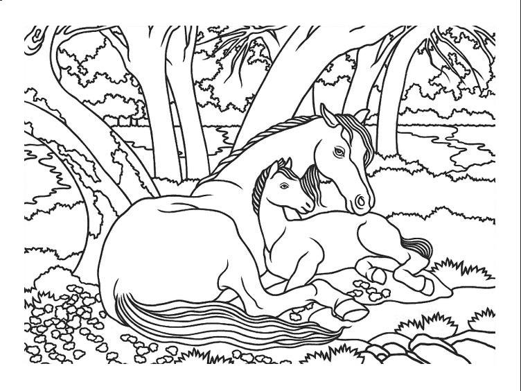Tranh tô màu con ngựa đang nằm nghỉ