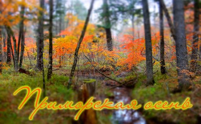 Золотая Приморская осень