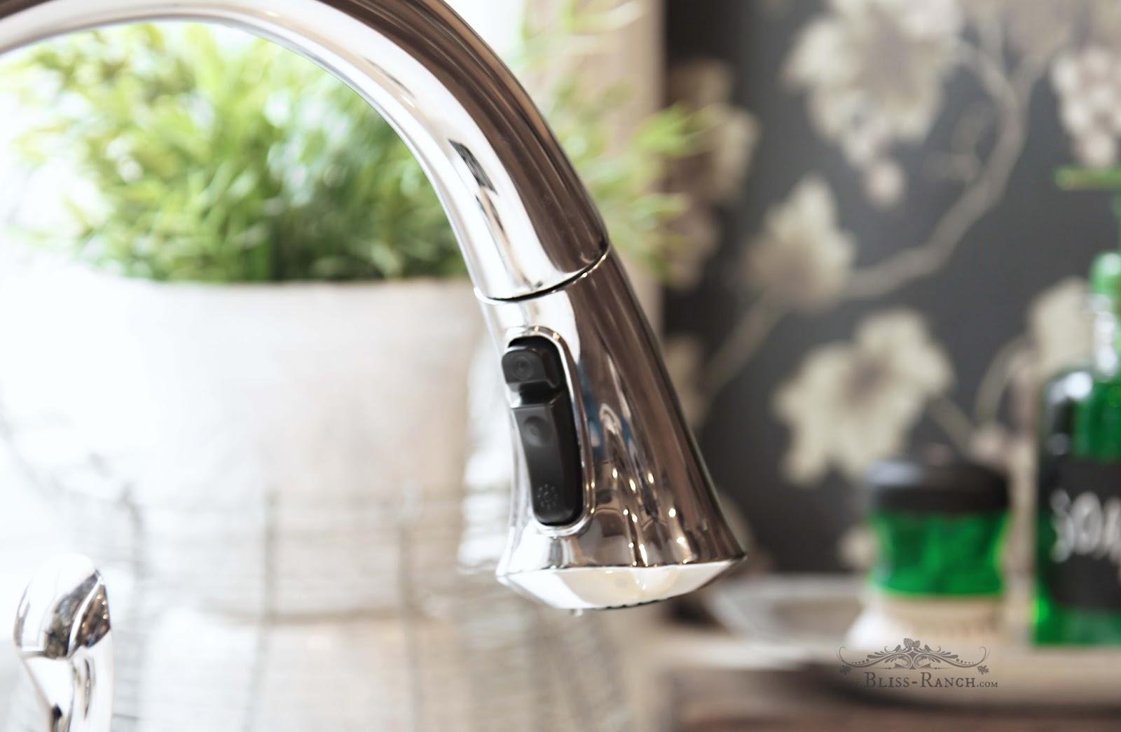 Touch Flow Delta Faucet Build.com Bliss-Ranch.com