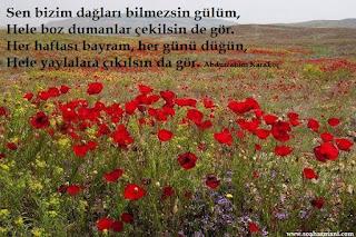 abdurrahim karakoç kimdir, abdurrahim karakoç hayatı, abdurrahim karakoç şiirleri, mihriban türküsü sözleri, anadolu sevgisi şiiri, isyanlı sükut şiiri, incitme şiiri