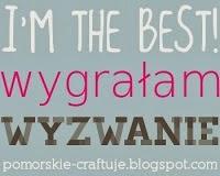 http://pomorskie-craftuje.blogspot.com/2013/11/wyzwanie-pg-1-wyniki.html
