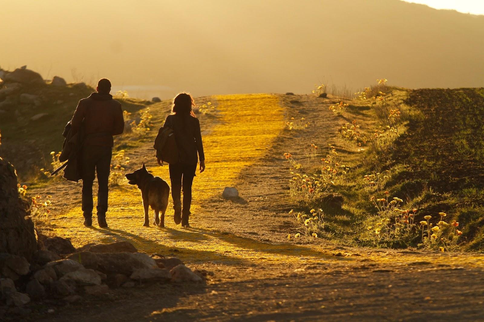 Dorothy, Lucas y Toto camino de Ciudad Esmeralda