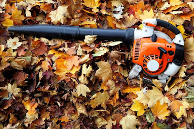 What Are the Benefits of Using A Leaf Blower?