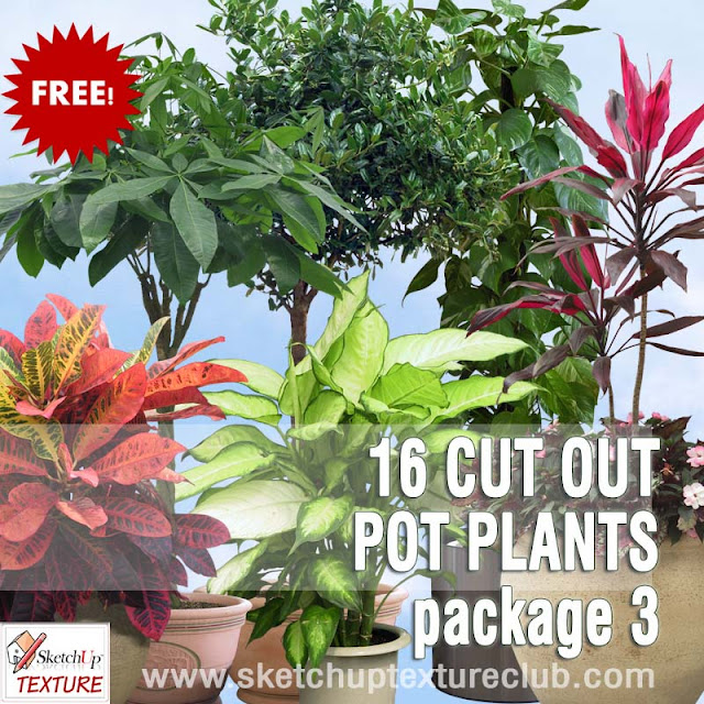 png pot plants collection 3