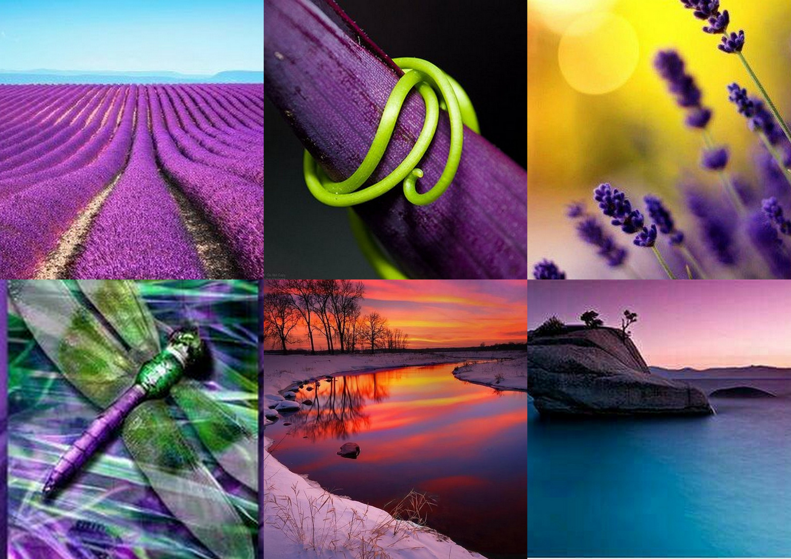 """fef7d0f4463a """"The Pantone Color of the Year has come to mean so much more than  what s  trending  in the world of design  it s truly a reflection of what s needed  in our ..."""