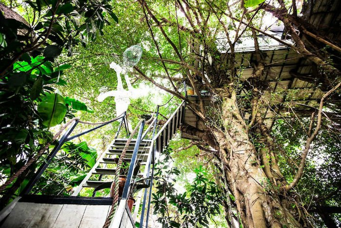 Travel Reviews Experience Living In Tree House Homestay