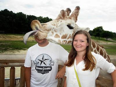 Una jirafa arruina la foto con su gran lengua
