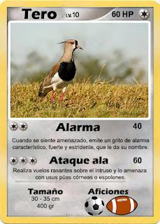 Cartas de Pokemon con Fauna uruguaya (Pradera) - Tero