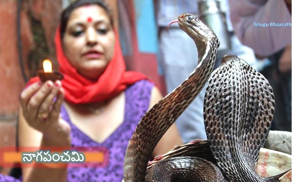 నాగపంచమి - Naagapanchami