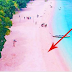 LOOK ! This Fascinating Pink Beach In The Philippines Was Chosen As One Of The Best Beaches In The Whole World!