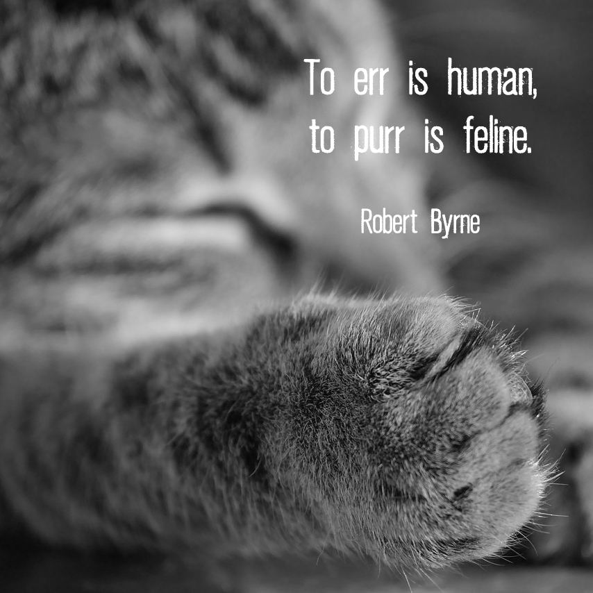 "Cat paw with quote ""To err is human, to purr is feline."" - Robert Byrne"