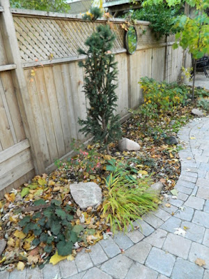 Cabbagetown Toronto garden makeover before by Paul Jung Gardening Services