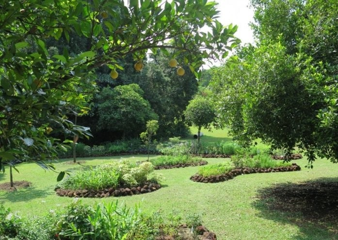 The spice garden was a new addition to the Istana grounds and was opened to the public two years ago during Istana Open House on Hari Raya.
