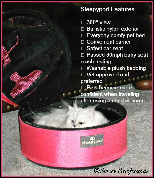 Truffle in her pink Sleepypod bed