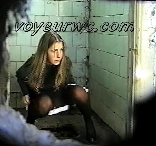 Voyeur filmed people using road toilet