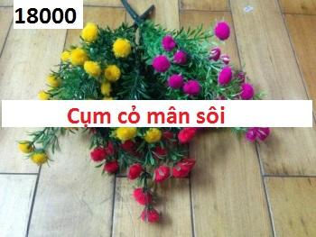 Phu kien hoa pha le o Phuong Canh