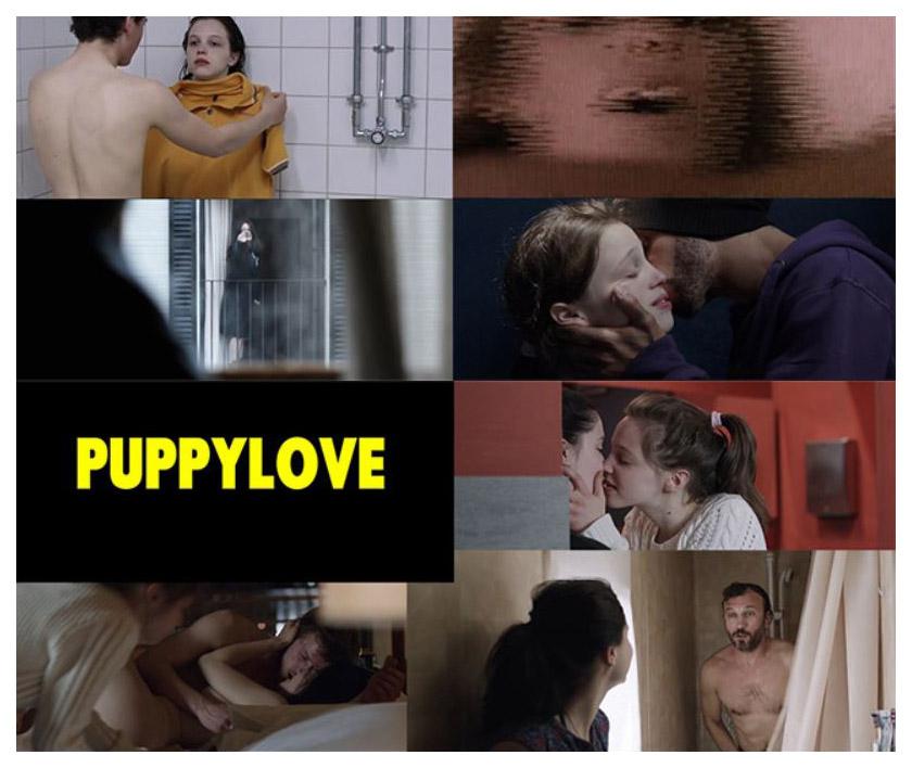 puppylove 2013