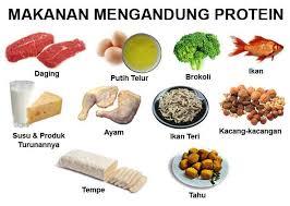 20 Contoh Makanan yang Mengandung Protein Tinggi