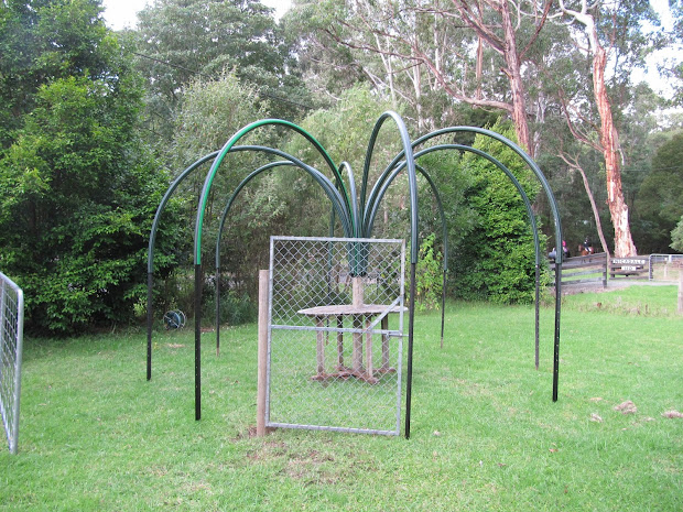 Bird Netting Fruit Trees Covers