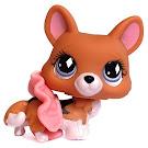 Littlest Pet Shop Pet Pairs Corgi (#639) Pet