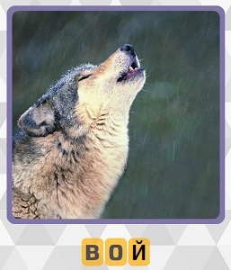волк подняв свою морду воет 5 уровень игры 600 слов